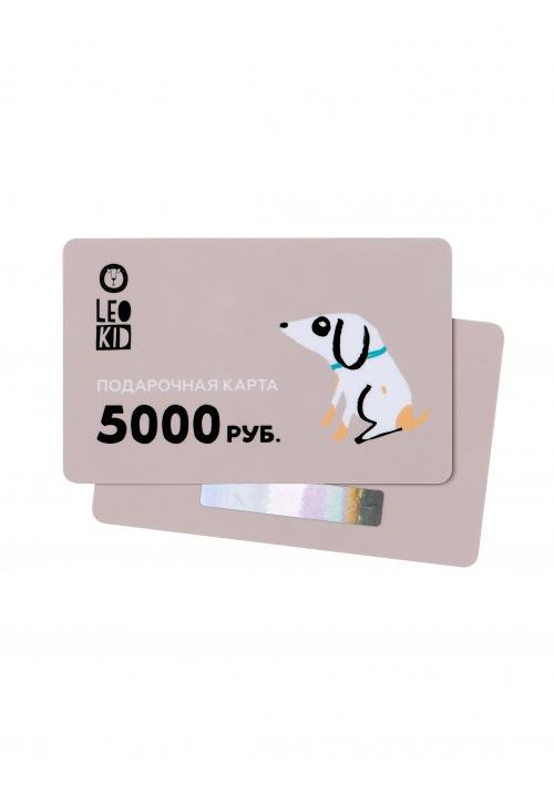 Пластиковая подарочная карта 5000